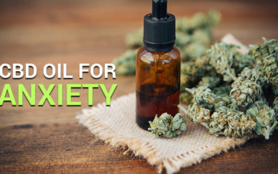 Why CBD Can Be Beneficial For Anxiety