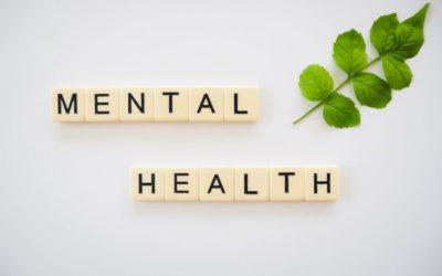 CBD And Mental Health: CBD Uses For Mental Health