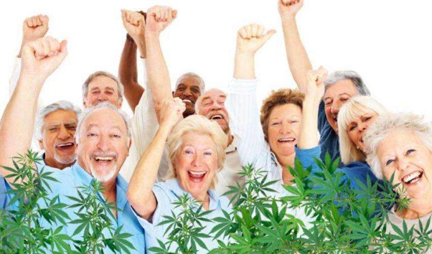 CBD Use Among Seniors