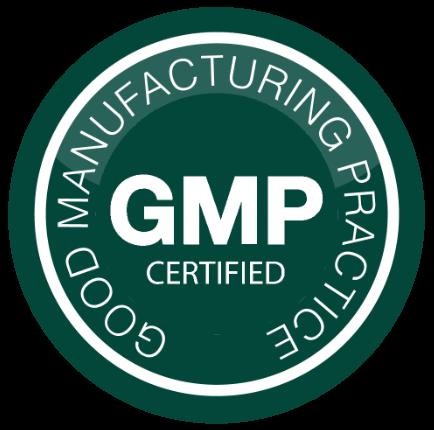 GMP-1