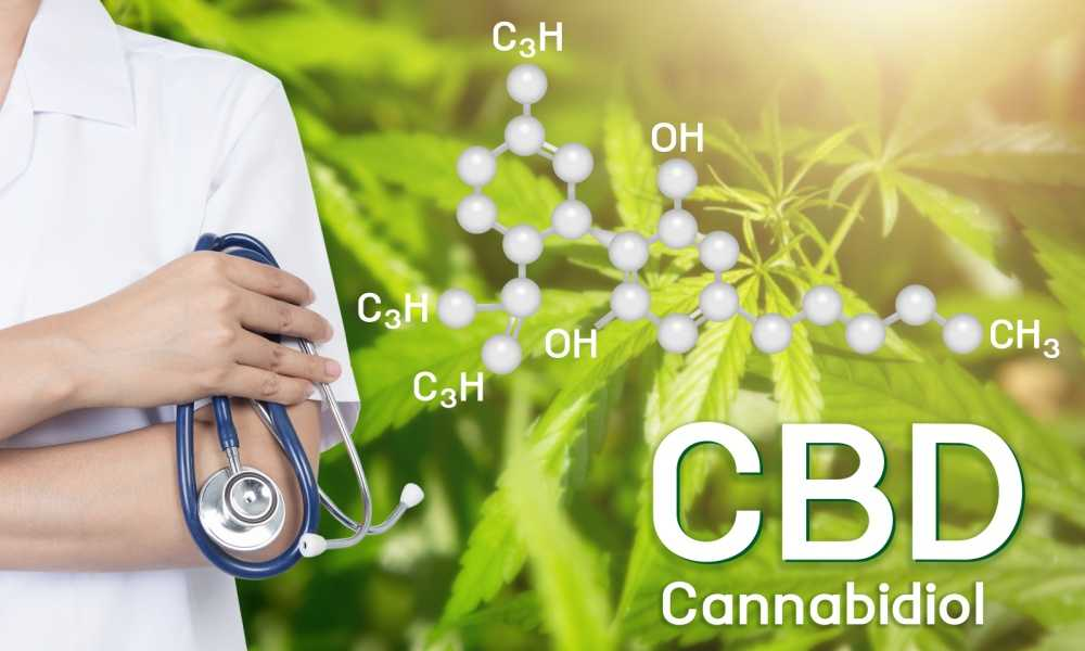 CBD For Holistic Health