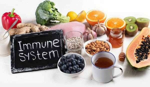 Take Care of your Immune System